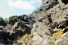 Wadi Clison Stockfotografie