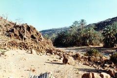 Wadi Clison Lizenzfreie Stockbilder