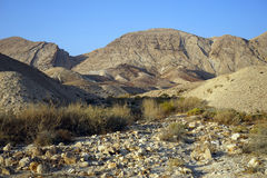 Wadi in desert Stock Image
