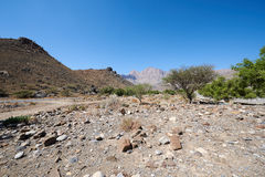 Wadi a dry river bed in the middle east. Oman Stock Photos