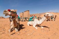 Wadi EL Seboua Stock Images