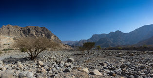 Wadi Ghail in Ras Al Khaimah. Panorama of wadi Ghail in Ras Al Khaimah, United Arab Emirates stock photography