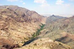 Wadi Hammam Dathneh. Oasis in Hammam Dathneh gorge, Jordan Stock Photos