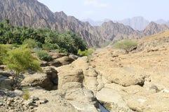 Wadi in the highlands of Ras al Khaimah, United Arab Emirates Stock Photos