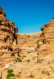 Wadi Jeihoon, the path to the Monastery El Deir at Petra Stock Image