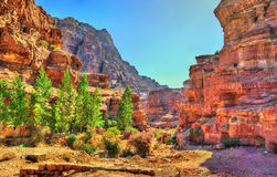 Wadi Jeihoon, the path to the Monastery El Deir in Petra Stock Photos