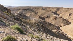 Wadi Kidod blisko Arad w Izrael zdjęcie royalty free