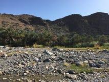 Wadi kołysa górę Fotografia Stock