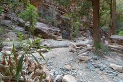 Wadi Lajab nella provincia di Jizan, Arabia Saudita immagini stock