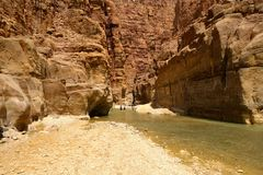 Wadi Mujib canyon royalty free stock photography