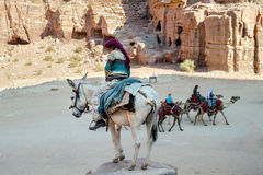 WADI MUSA, JORDAN - NOVEMBER 18, 2012:  Camels and mules for rent and arab lessee at ancient Petra city. Royalty Free Stock Images