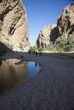 Wadi in Oman Stock Foto's