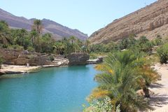 Wadi in Oman Een Waterparadijs in de woestijn Stock Foto