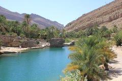 Wadi in Oman Ein Wasser-Paradies in der Wüste Stockfoto