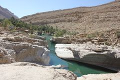 Wadi in Oman. A Water Paradise in the desert Stock Images