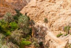 Wadi Qelt in Judean desert around St. George Orthodox Monastery Stock Photos