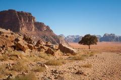 Wadi Rum – Jordan desert Stock Photography