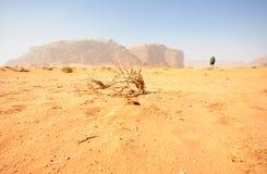 Wadi rum stock photography
