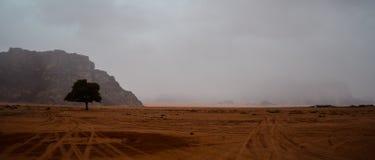 Wadi Rum Fotos de archivo libres de regalías