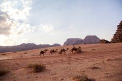Wadi Rum Desert Fotos de archivo libres de regalías