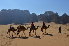 Wadi Rum desert with camels - Jordan royalty free stock photos