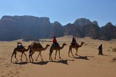 Free Wadi Rum Desert With Camels - Jordan Royalty Free Stock Photos - 115333078