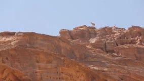 Wadi Rum Ibex que se coloca en el acantilado de la roca almacen de video