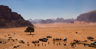 Wadi Rum maestoso, aka valle della luna, di una riserva naturale protetta con le montagne drammatiche dell'arenaria e della rocci fotografie stock libere da diritti