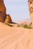 Wadi Rum Tracks Foto de Stock Royalty Free