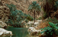 Wadi Shab. The Wadi Shab, one of the most famous as well as beautifull wadi (valleys) in the arab sultanate Oman Royalty Free Stock Photography