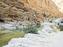 The Wadi Shab with emerald green water Stock Photography
