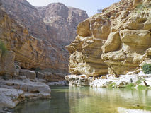 The Wadi Shab with emerald green water Stock Images