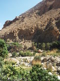 A view in Wadi Shab oasis, Oman, Arabian peninsula Stock Image