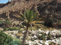 A View taken in Wadi Shab oasis, Oman, Arabian Peninsual Stock Photos