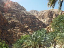 A View of Wadi Shab Oasis, Oman Stock Photos