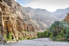 Wadi Shab Oman fotografia stock libera da diritti