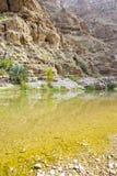 Wadi Shab Oman Royalty Free Stock Images