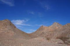 Wadi Shahamon Israel Royaltyfri Bild