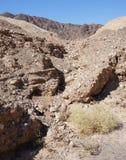 Wadi Shahamon near Eilat. Israel Stock Photos