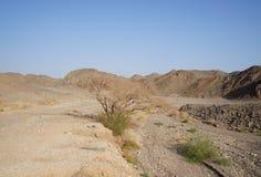 Wadi Shahamon near Eilat Stock Photos