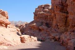 Wadi som fotvandrar i den Arava öknen arkivbild