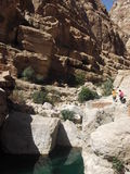 Wadi Tiwi Oasis, Omã Fotografia de Stock
