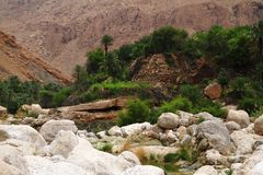 Wadi Tiwi Royalty Free Stock Image
