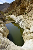Wadi Zafit in Negev desert. Stock Photos