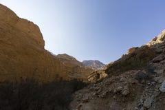 Wadiego Arugot rzeka, ein Gedi rezerwat przyrody, nieżywy morze, Izrael Obraz Stock