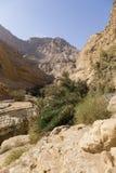 Wadiego Arugot rzeka, ein Gedi rezerwat przyrody, nieżywy morze, Izrael Fotografia Royalty Free