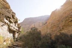 Wadiego Arugot rzeka, ein Gedi rezerwat przyrody, nieżywy morze, Izrael Zdjęcia Stock