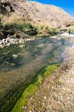Wadiego Hasa zatoczka w Jordania Obrazy Stock