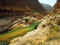 Wadin hycklar, Oman Arkivfoton