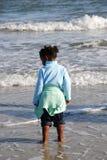wading Стоковые Изображения